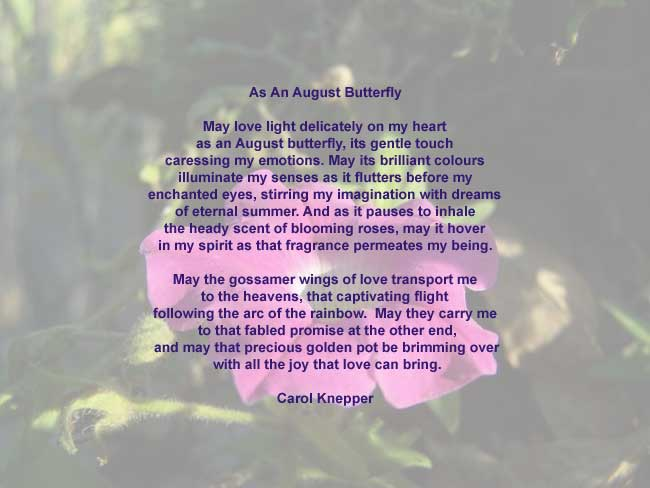 As An August Butterfly, love poem by Carol Knepper, background image by Richard Vallance.